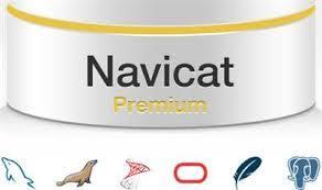 Navicat Premium 15.1.12 Crack With Registration Key Free Download 2020
